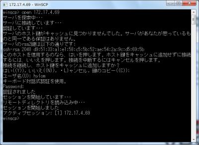 図1 WinSCPのコンソールモード