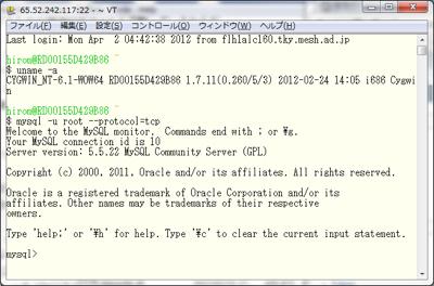 図13 SSH経由でmysqlコマンドを利用する