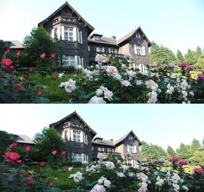 図13 上が「心射円筒」、下が「心射方位」のサンプルだ。洋館の形や周辺の花の形から違いが判断できる
