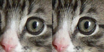 図2 通常の拡大とSmillaEnlargerの拡大を比較すると画質の差は一目で分かる