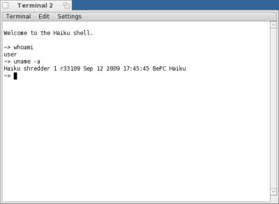 図6 Haikuのターミナル画面