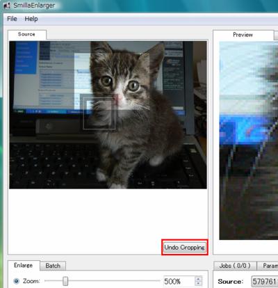 図7 Sourceタブで画像のトリミングを実行する