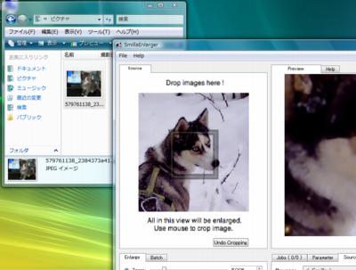図6 「Drop images here!」と書かれた犬の写真の上に画像をドラッグ&ドロップする
